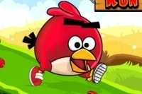 Angry Birds Rennen