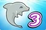 Delphinshow 3