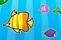 Fisch Memory