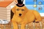 Hund ankleiden 2