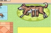 Mutter Hund