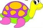 Schildkröte ausmalen