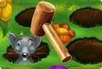 Sisi die Mausfängerin