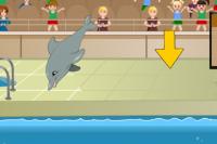 Meine Delfin-Show 1