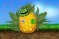 Ananas Helden